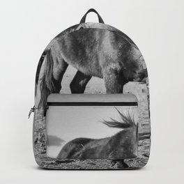 The black horse Backpack