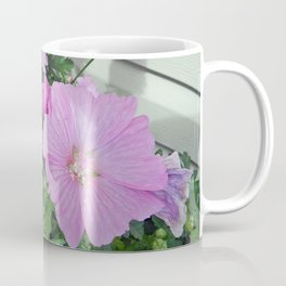 Pink Musk Mallow Bush in Bloom Coffee Mug
