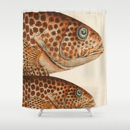 Fish Classic Designs 6 Shower Curtain