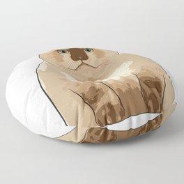 Fluffy CAT Floor Pillow