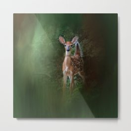 Woodsy Summer Fawn Metal Print