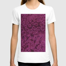 Dark Pink Queen Anne's Lace (Up Close) T-shirt