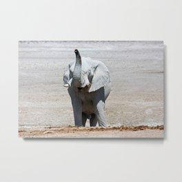 NAMIBIA ... Elephant fun III Metal Print