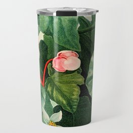 Pink Floral The Oblique-Leaved Begonias : Temple of Flora Travel Mug
