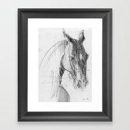 Horse (Handsome) Framed Art Print