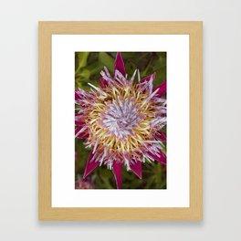 Bee and the Flower Framed Art Print