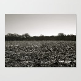 Empty Space in Kalamazoo, MI Canvas Print