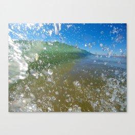 Summer's Creation Canvas Print