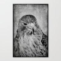 hawk Canvas Prints featuring Hawk by SilverSatellite