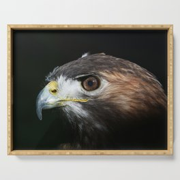 Sparkle In The Eye - Red-tailed Hawk Serving Tray