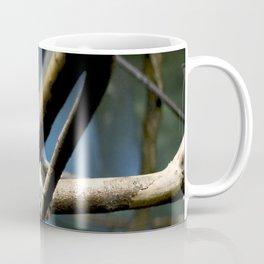 Cottontip Tamarin in Colour Coffee Mug