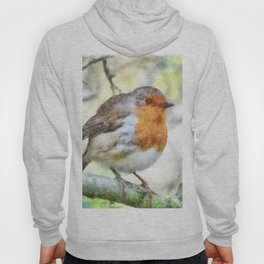 Christmas Robin Redbreast Winter Watercolor Hoody