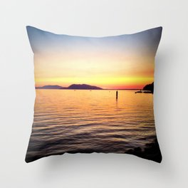 View from a Train Throw Pillow