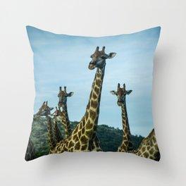 Giraffe Group Posing Throw Pillow