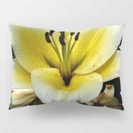 Wonderful Flower yellow and black Pillow Sham