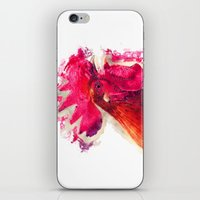 rooster iPhone & iPod Skins featuring Rooster by jbjart