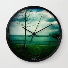 Coronation park Wall Clock
