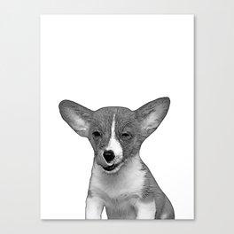 b&w winking puppy Canvas Print