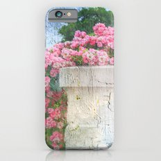 Cascade of Pink Roses iPhone 6s Slim Case