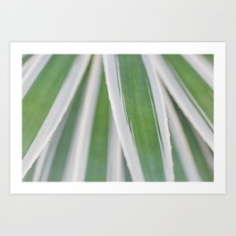 Stripes by Nature Art Print