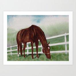 Sissy's Horse Art Print