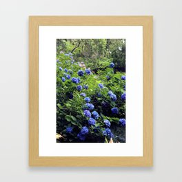 And in the Garden I Dance Framed Art Print