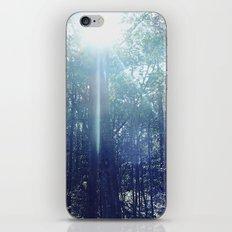 In the Light iPhone & iPod Skin