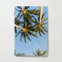Palm Tree Heaven Metal Print