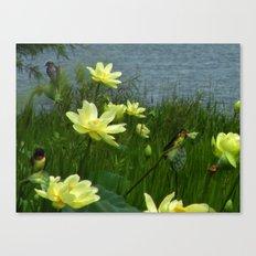Lotus & Swallows Canvas Print