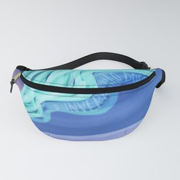 The winter will pass Fanny Pack