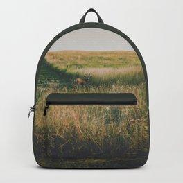 Evening Grazer Backpack