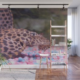 Photo Pleco Leopard Wall Mural