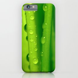Green grass  32 iPhone Case