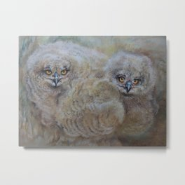 OWLS Wildlife illustration Two young Eagle Owl in the forest Pastel drawing Gray birds Metal Print
