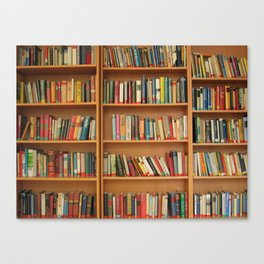 Bookshelf Books Library Bookworm Reading Canvas Print