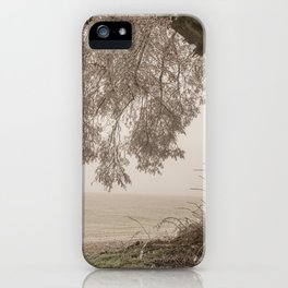 Limewood iPhone Case