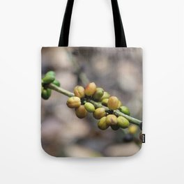 Illustration Coffee Beans Tote Bag