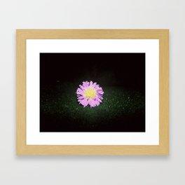 Small Flower #3 Framed Art Print