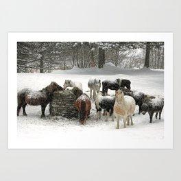 Winter scene color Art Print