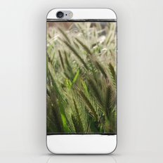 Soft Breeze iPhone & iPod Skin