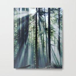 Opal Creek Metal Print