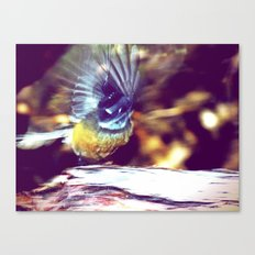 mid take-off.  Canvas Print