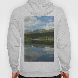 Norwegian Reflections Hoody