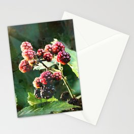 Late in the Season Stationery Cards