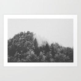 INTO THE WILD XXV Art Print