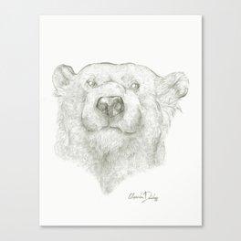 A Polar Bear  Canvas Print