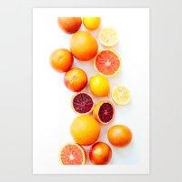 Winter Citrus 2 Art Print