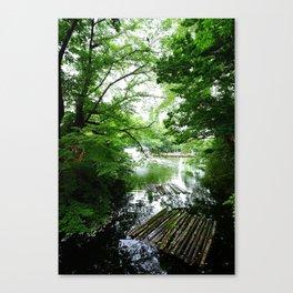 Ueno park Canvas Print