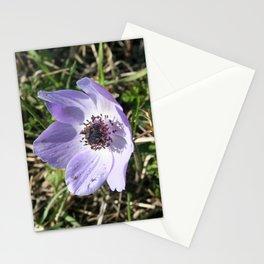Lilac Blue Anemone Coronaria Wild Flower Stationery Cards