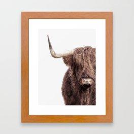 Highland Cow Portrait Framed Art Print